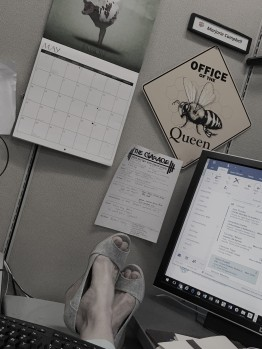 office pic